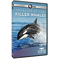 Nature: Invasion of the Killer Whales [DVD] [Import]