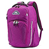 High Sierra Autry Backpack, 15.5-inch Laptop Backpack, Ideal for High School and College Students Hyacinth/Ash
