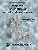 Akupunktur für den Menschen und seine liebsten Haustiere: Traditionelle Chinesische Medizin für Mensch, Pferd, Hund und Katze - Dr. Hans Martin Steingassner