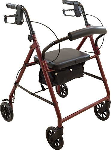 ProBasics Medical Rolling Walker with Wheels - 4 Wheel Walker with Seat, Backrest and Storage Pouch - Rollator Walker for Seniors - Durable Steel Frame Supports up to 300 lbs, 6-inch Wheels, Burgundy
