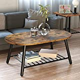 IRONCK Industrial Coffee Tables for Living Room, 2-Tier Oval Tea Table End Table with Storage Shelf, Easy Assembly, Rustic Home Decor