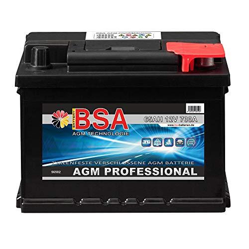 AGM Batterie 65AH 12V Solarbatterie AGM Gel Versorgungsbatterie Wohnmobil Boot Akku ersetzt 60AH 70AH