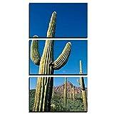 ZXYJJBCL Planta De Cactus Imponente Tríptico Decoración del Hogar Restaurante Cartel Mural Setmoderno Decorativo