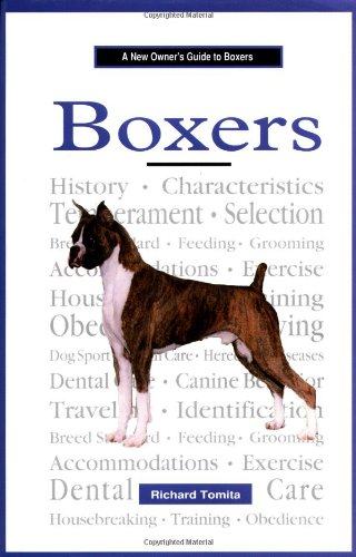 A New Owner's Guide to Boxers