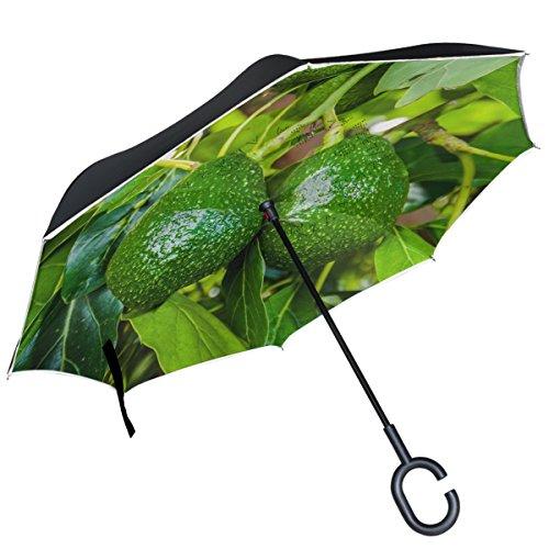 Alaza Avocado Fruit Green Baum Blätter seitenverkehrt Regenschirm Double Layer winddicht Rückseite Regenschirm
