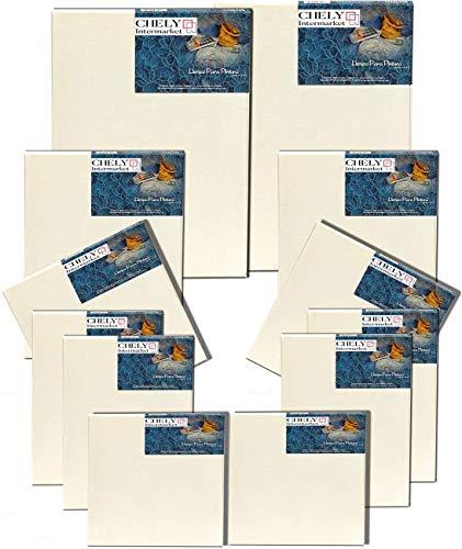 Chely Intermarket, Set de 12 lienzos para pintar 20x20(x2),20x30(x4),30x40(x2),30x30(x2) 280grs y 40x60cm(x2)380grs | Apto para óleo, acrílico o técnica mixta Pre-estirado 100% algodón (560)