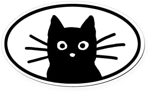 Lucky Black Cat Kitty Car Bumper Sticker