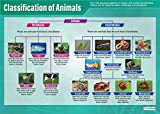"""Classification of Animals   Science Posters   Gloss Paper Measuring 33"""" x 23.5""""   STEM Charts for The Classroom   Education Charts by Daydream Education"""
