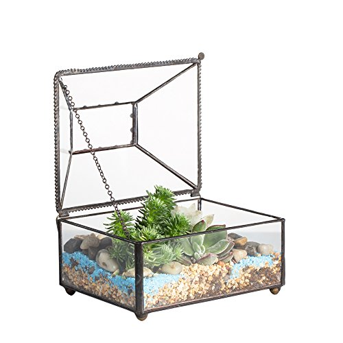 NCYP Small Glass Jewelry Trinket Storage Organizer Box with Lid for Home Decor Modern Vintage Black Geometric Clear Terrarium Indoor Succulent Planter Display Decoration Gift (NO Plants)