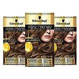 Schwarzkopf Oleo Tinte para cabello rubio intenso, paquete de 3 colores al óleo permanentes, sin amoníaco, cubre grises, 6-10 rubio oscuro