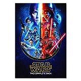 Pira Pira Boxes Star Wars The Complete Saga Poster Exclusive Art (13x19)