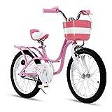 RoyalBaby Girl's Bike Little Swan 18 Inch Kids Bike with Kickstand Basket Girls Child's Bicycle Pink