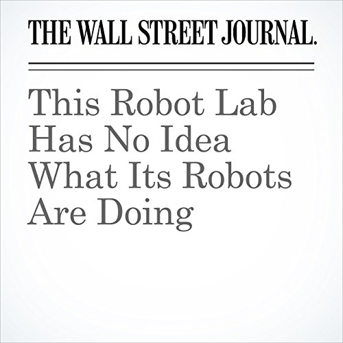 This Robot Lab Has No Idea What Its Robots Are Doing copertina