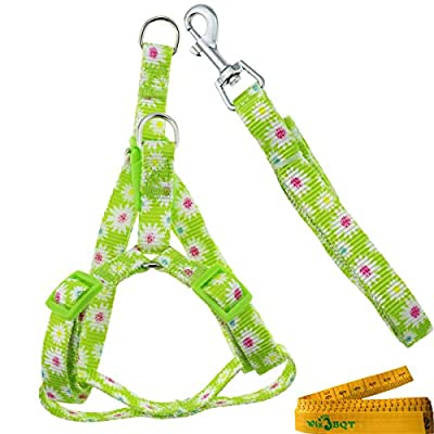 Adjustable Breakaway Flower Printed Dog Cat Pet Harness and Leash Set for Dogs Cats Pets
