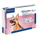Virbac 104825106 Effipro'Duo Cani 4Pip Large 20-40...