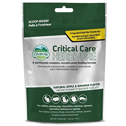 Oxbow Animal Health Critical Care, Herbivore, Apfel-Banana-Geschmack, 141 g Beutel