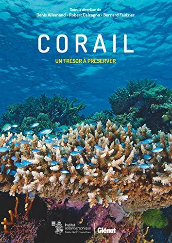 Corail: Un trésor à préserver