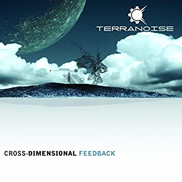 Cross-Dimensional Feedback