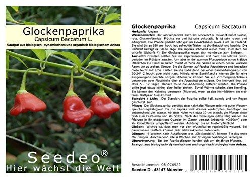 Seedeo® Glockenpaprika (capsicum baccatum L.) 20 Samen BIO