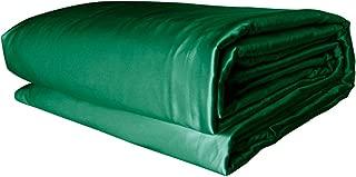 THXSILK Silk Comforter with Removable Silk Duvet Cover, Silk Filled Comforter Silk Duvet Silk Quilt - 100% Top Grade Natural Silk, Queen Size, Emerald Green