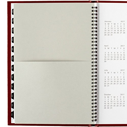 DayMinder Monthly Planner 2016, Premiere, 7.88 x 11.88 Inches, Assorted Colors - Color May Vary (G470H-10) Photo #6