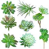 JUSTDOLIFE Suculenta Artificial Decoracion, 8 Pieza, Cactus Artificiales Decoracion, Adecuado...