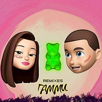 Гамми (Remixes)
