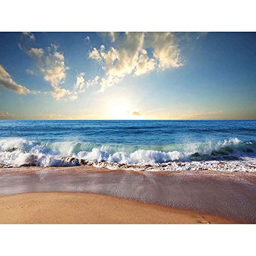 Bumblebeaver Photograph Seascape Beach Sand Ocean Surf Waves Picture Art Print Poster Foto Marina Playa Arena Oceano Imagen Lámina Póster