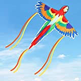 LESONG Kite for Kids and Adults, Easy to Fly, Large Kites with Kite Guide & Spool for Boys and Girls, Beautiful Rainbow Parrot Kite for Outdoor Activity Games & Indoor Decoration