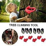Soportes y agarres de piedras de escalada de plástico, ideales para marcos de escalada, casas en los árboles y muros de escalada para niños