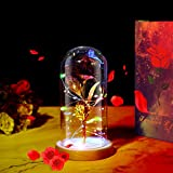 Best Gift for Wedding Anniversary Valentine's Day,Love Gift for Her or Him, Forever Rose Beauty and Beast Rose Kit ZAZZIO Artificial Rose, with 20 Colorful LED Lights Birthday (Red)