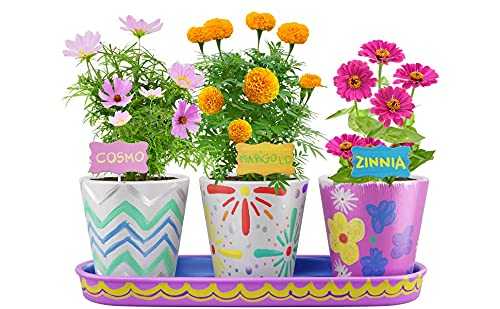 Paint & Plant Stoneware Flower Growing Kit - Kids Gardening Science Gifts for Girls and Boys Ages 4 5 6 7 8 9 10 - STEM Arts & Crafts Project Activity - Grow Your Own Cosmos, Zinnia & Marigold Flowers