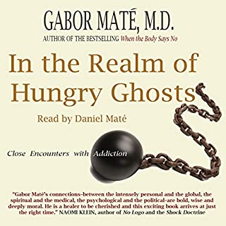 In the Realm of Hungry Ghosts audiobook cover art