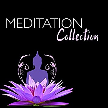 Meditation Collection - 50 Spa & Yoga Music, Vibrational Healing Frequencies for Chakra Alignment