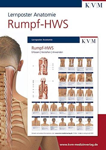 Lernposter Anatomie: Region Rumpf-HWS (Die Muskelbuch-Reihe)