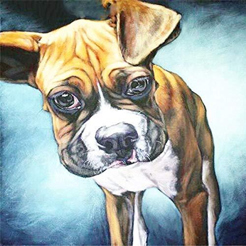 Rompecabezas para niños Adultos 1000 Piezas Rompecabezas para niños Juveniles Juguete de Entretenimiento Decoración Familiar(50x75cm) Perro Animal