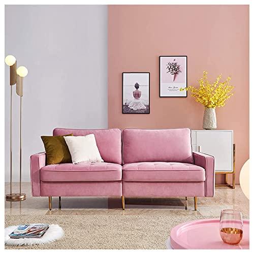 WXHXJY Sofá de 2 plazas - Tela de Terciopelo, sofá Moderno...
