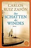 Cover Schatten des windes
