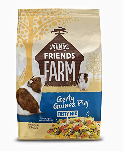Supreme Petfoods Tiny Friends Farm Gerty Guinea Pig.