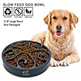 Decyam Pet Fun Feeder Dog Bowl Slow Feeder Large 11.8', Slow Eating Dog Bowl Interactive Bloat Stop Dog Bowl, Eco-Friendly Non Toxic Slow Feed Dog Bowl for Medium Large Dogs