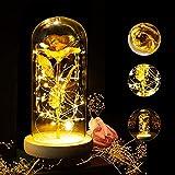 ASANMU Regalos Originales para San Valentín, Bella y la Bestia Rosa de Seda Dorado y luz LED con Pétalos Caídos en Cúpula de Cristal sobre una Base de Madera Regalo para Bodas/Aniversario/Cumpleaños