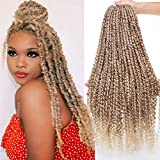 Xtrend 22inch 6Packs Pre-twisted Passion Twist Hair Crochet Braids Hair 15strands/pack Long Bohemian Hair Ombre Passion Twist Braiding Hair for Women (6packs, 27/613#)