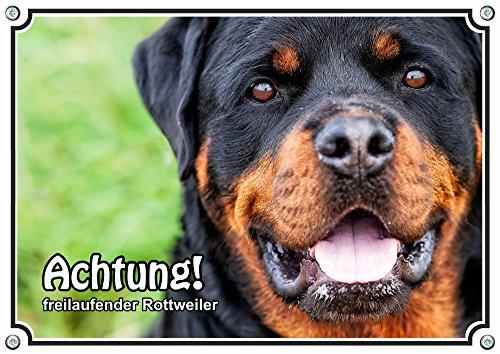 Petsigns Hundeschild - freilaufender Rottweiler - Metallschild, DIN A5