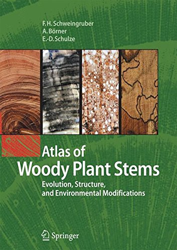 Atlas of Woody Plant Stems: Evolution, Structure, and Environmental Modifications