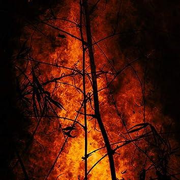 Fire Beats, Vol. 1