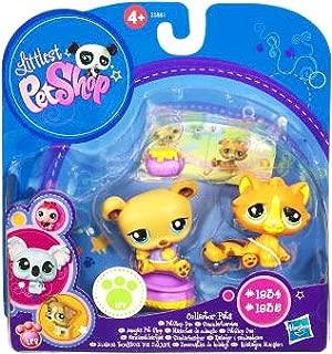 Littlest Pet Shop Collector Pet Pairs Series 1 Figures Baby Tiger Bear
