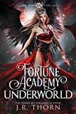 Fortune Academy Underworld: Book Five (Kindle Edition)