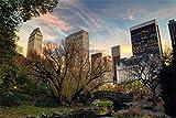 3D Diy Pintura Digital Por Números Manhattan Central Park Árbol Puente Moderno Arte De Pared Lienzo Pintura Navidad Regalo Único Decoración Del Hogar 30 * 40cm