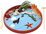 The Coral Sandbox Beach Zen Garden Desktop, for Relaxation and Meditation, Small Play Sand Box Toy for Kids, Boys and Girls