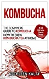 Kombucha: The Beginners Guide To Kombucha-How to Brew Kombucha Tea At Home-A 60 Minute Short Read (Kombucha, How to Make Kombucha, Kombucha Recipes for ... Fermented Tea for Digestive Health Book 1)